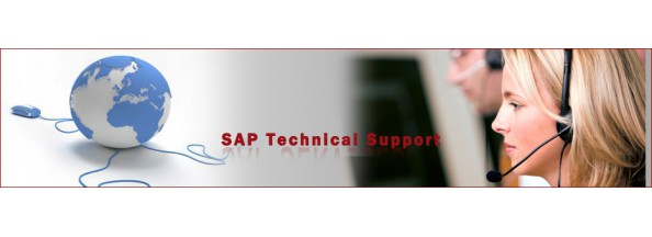 sap basis support